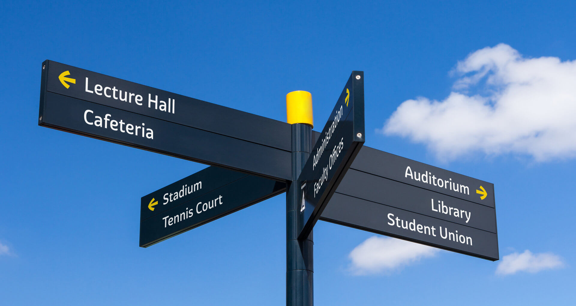 Graviola in use - wayfinding